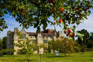 Hever Castle - Orchard