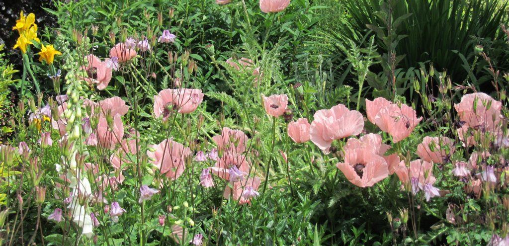 Laskett Garden