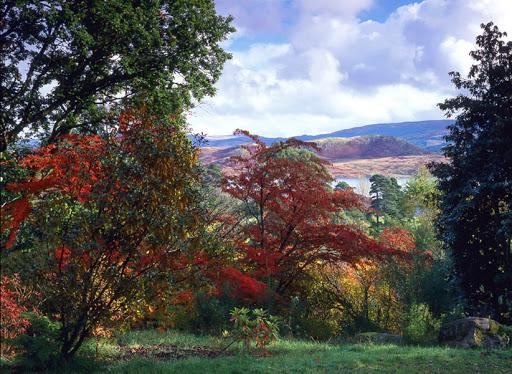 Crarae Glen Garden