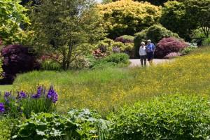 RHS Garden Wisley - copyright RHS