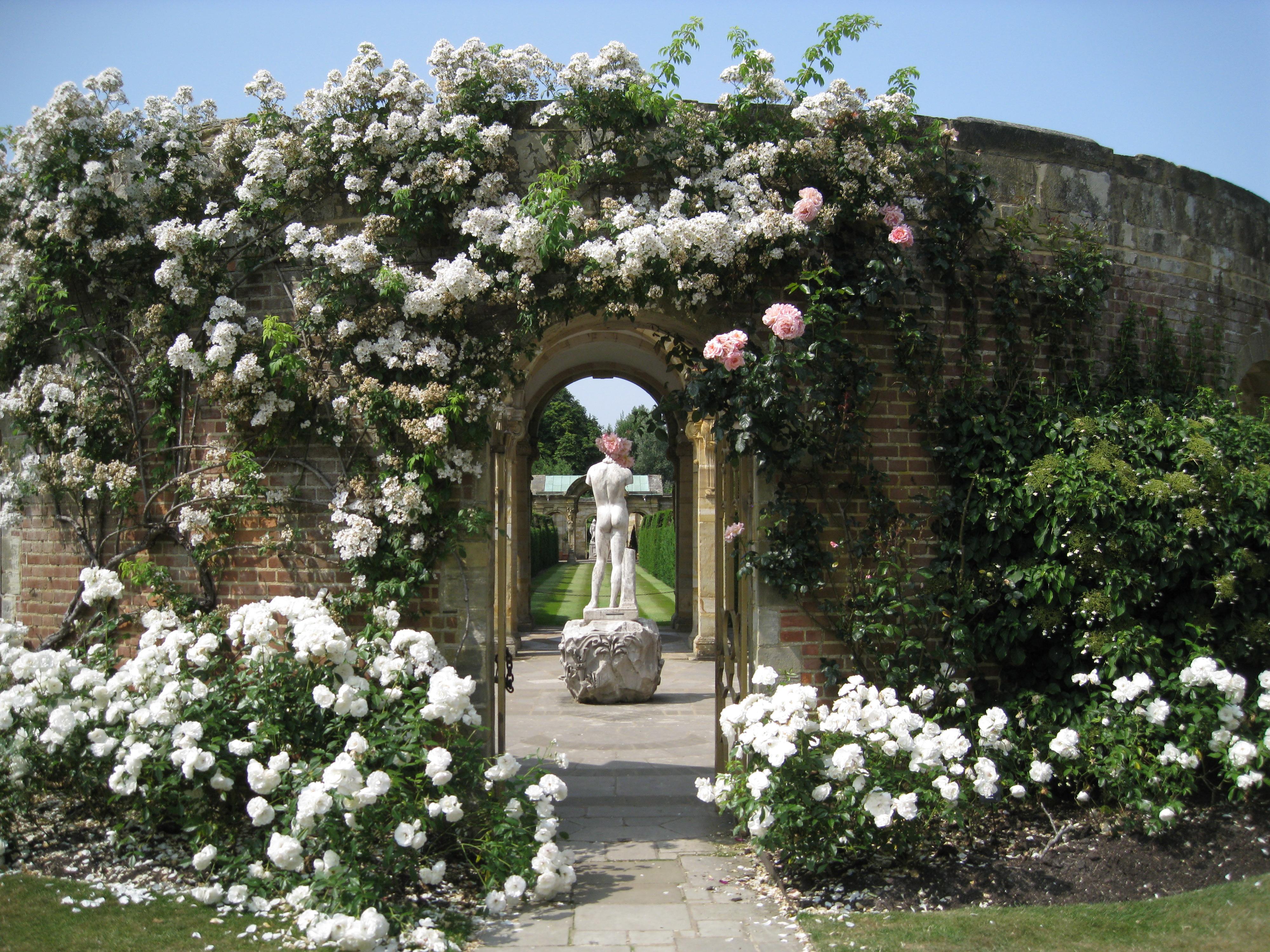 Summer Gardens With Hampton Court Flower Show