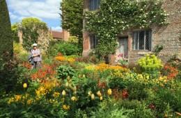 Summer Gardens with Hampton Court Flower Show 2017