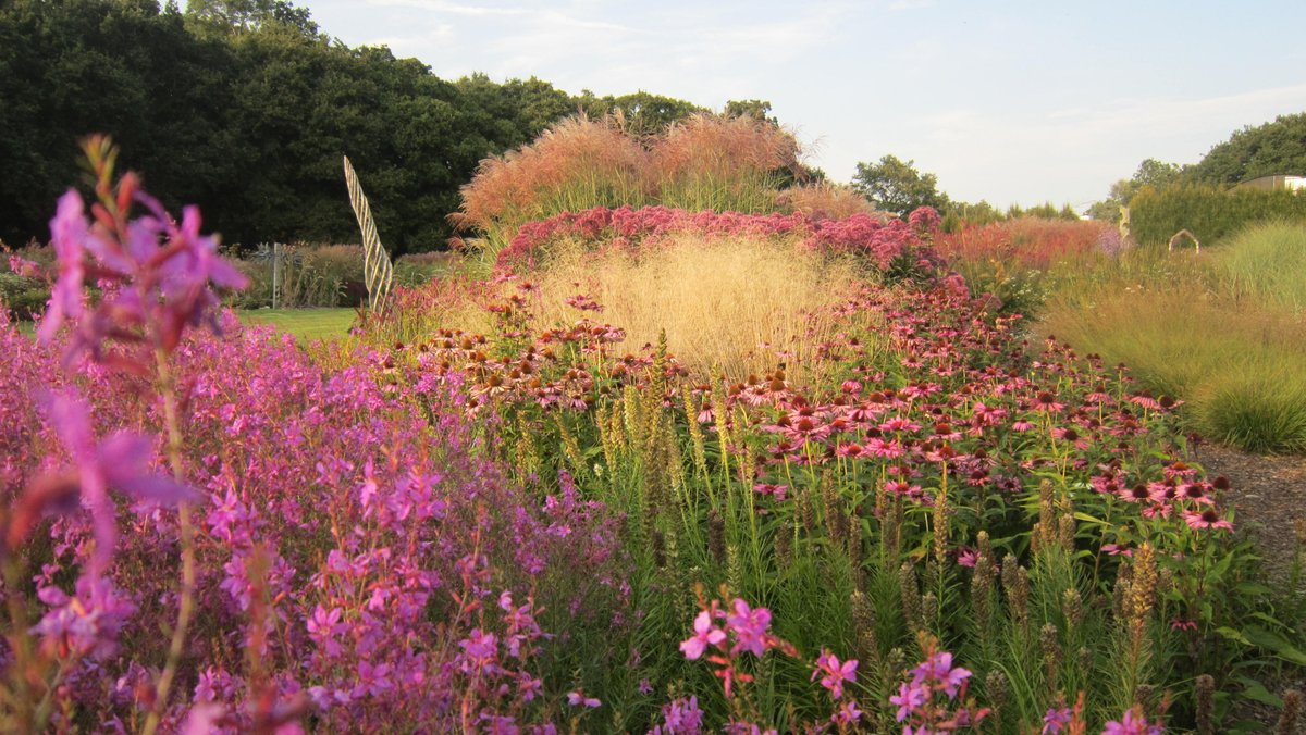 Sussex Praire Gardens