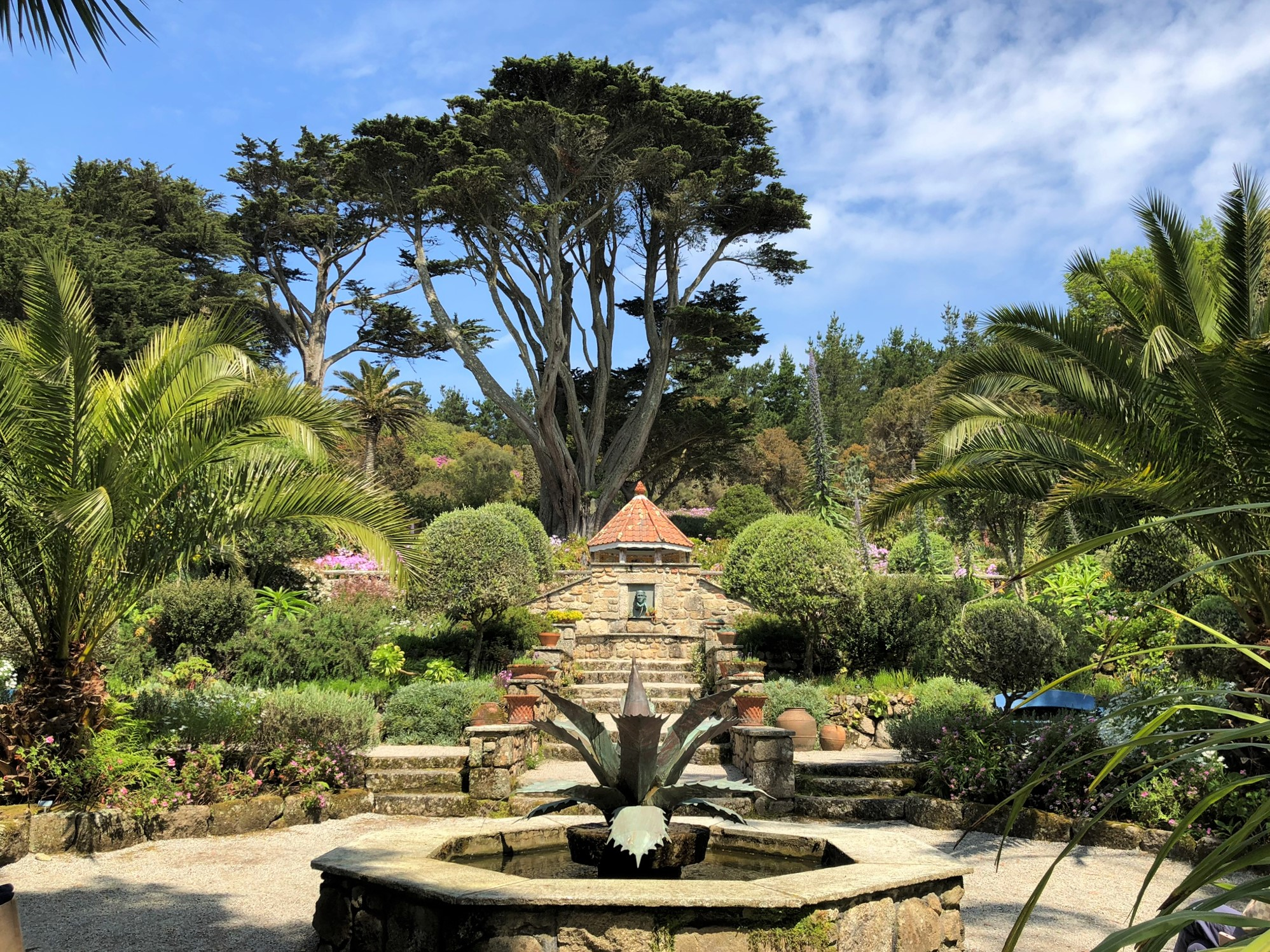 Tresco Abbey Gardens, Isles of Scilly