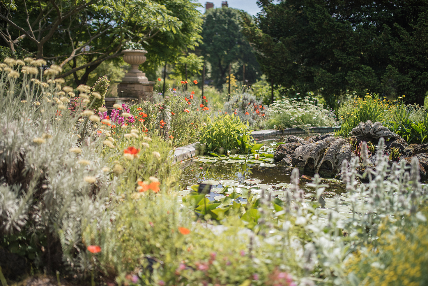 pond and flowers at Chelsea Physic Garden