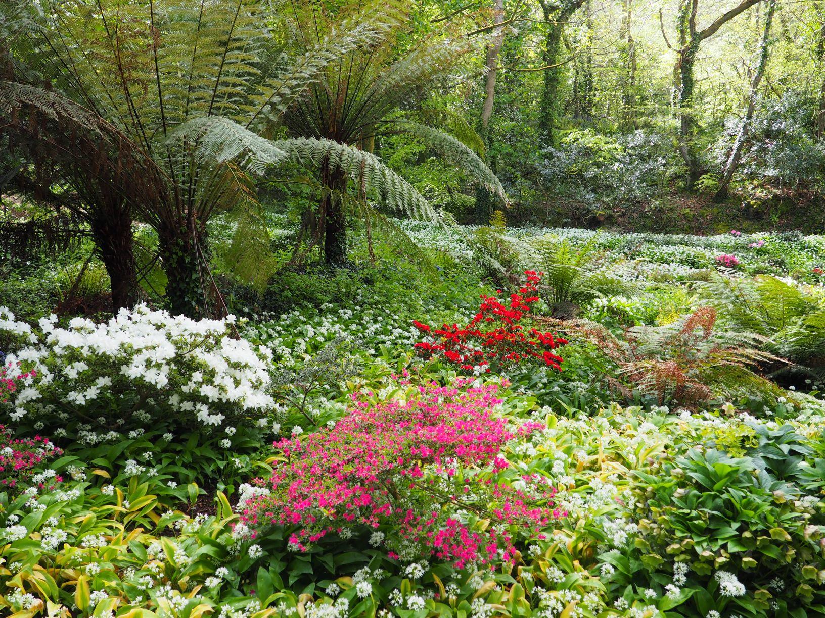 Bonython gardens 2